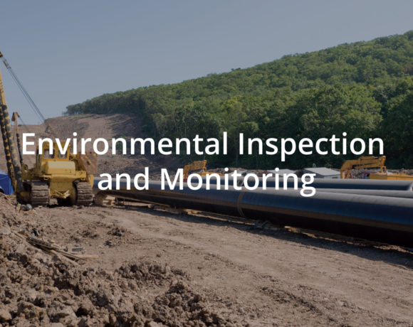 Environmental Inspection and Monitoring