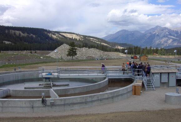 Sewage Treatment Triad: Better, Faster, Cheaper?
